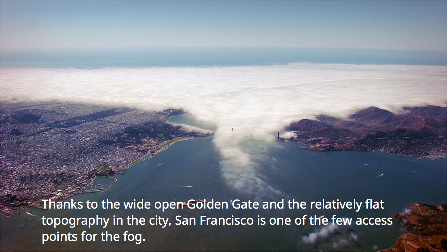 Courtesy of Newsbound De mist ifying The San Francisco